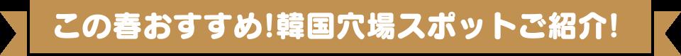 この春おすすめ!韓国穴場スポットご紹介!